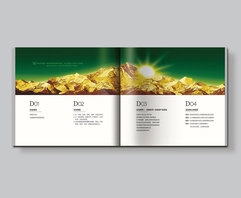 龙湘食品企业画册设计